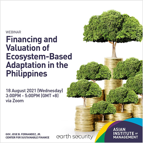 Financing and Valuation of Ecosystem-based Adaptation